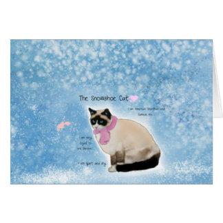 The Snowshoe Cat Card