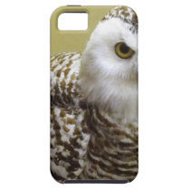 The Snowy Owl iPhone SE/5/5s Case