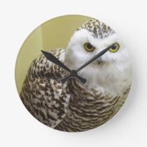 The Snowy Owl Round Clock