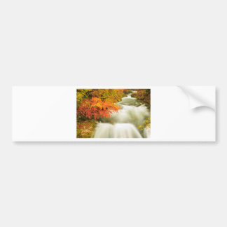 The Soteska Vintgar gorge in Autumn Bumper Sticker