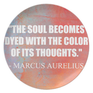 The Soul Becomes Dyed Party Plates