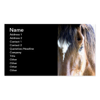 The Soul l Equine/Horse Related-Business Business Cards