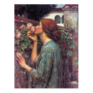 The Soul of The Rose by John W Waterhouse Post Card