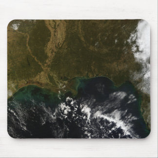 The southeastern United States Mouse Pad