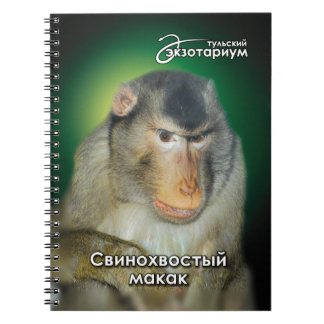 The southern pigtail macaque. notebook