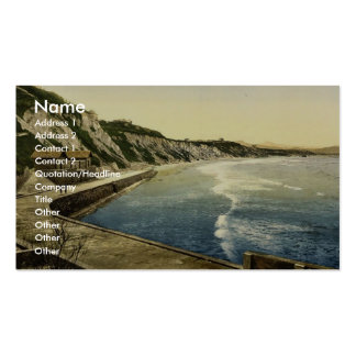 The Spanish coast, Biarritz, Pyrenees, France clas Double-Sided Standard Business Cards (Pack Of 100)