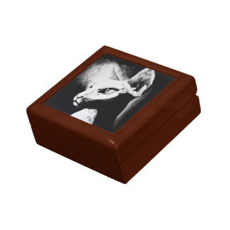 The Sphynx Cat Feline Original Art Wooden Box Trinket Boxes