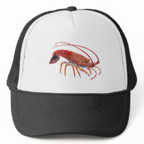 THE SPINEY ONE TRUCKER HAT