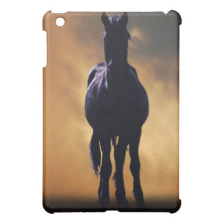 The spirit gaurdian iPad mini case