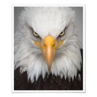 The spirit of freedom. photo print