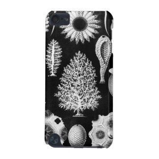 The Sponge of the Sea - Naturalist Image 1904 iPod Touch (5th Generation) Case