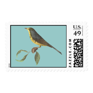The Spotted Canada Warbler	(Sylvicola pardalina) Stamp