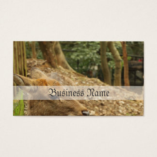 The Spotted Deer Business Card