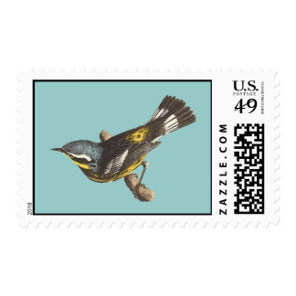 The Spotted Warbler	(Sylvicola maculosa) Postage Stamp