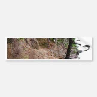 The Spruce Railroad Trail Olympic National Park Bumper Sticker