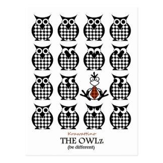 The squared Owlz Postcard