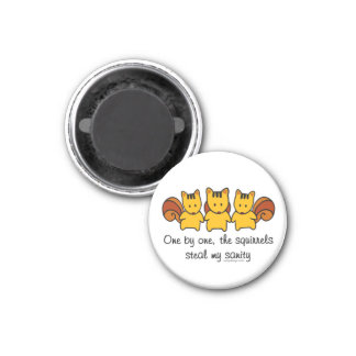 The squirrels steal my sanity 1 inch round magnet