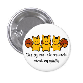 The squirrels steal my sanity 1 inch round button