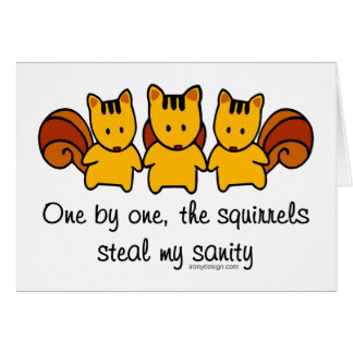The squirrels steal my sanity card