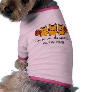 The squirrels steal my sanity pet clothes