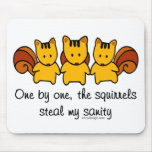 The squirrels steal my sanity mouse pad