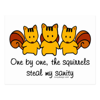 The squirrels steal my sanity postcard