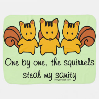 The squirrels steal my sanity receiving blanket