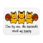 The squirrels steal my sanity rectangular photo magnet
