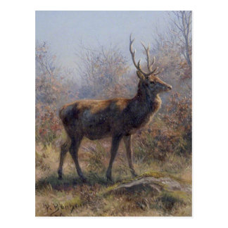 The Stag by Rosa Bonheur Postcard