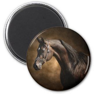 The Stallion 2 Inch Round Magnet