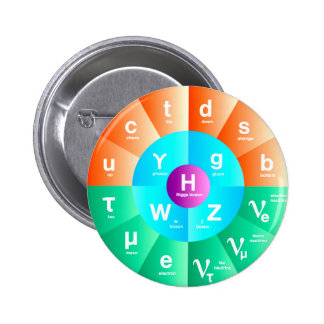 The Standard Model of Particle Physics Pinback Button
