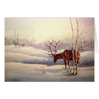 THE STANDOFF by SHARON SHARPE Greeting Cards