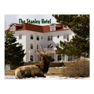 The Stanley Hotel Postcard