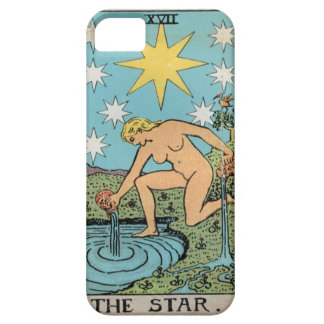 The Star Tarot Case