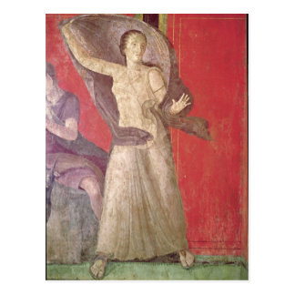 The Startled Woman, North Wall Postcard