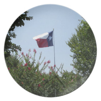 The State of Texas Flag Plate