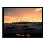 The Steel Pier in Atlantic City Postcards