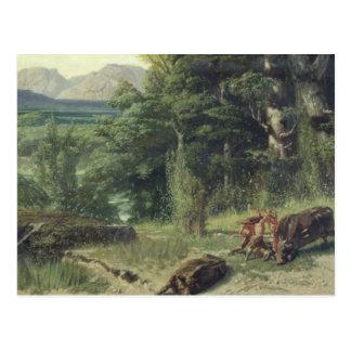 The Stone Age Postcard