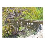The Stone Bridge Postcards