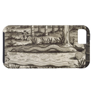 The Stone Snake, from 'China Illustrated' by Athan iPhone SE/5/5s Case