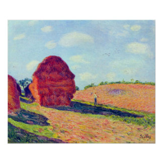 The straw rents by Alfred Sisley Posters