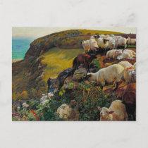The Strayed Sheep Postcard