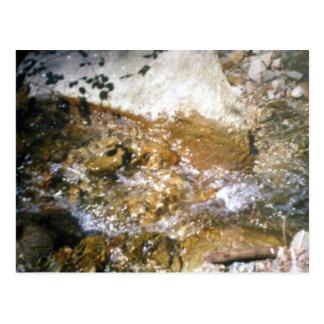 The Stream Postcard