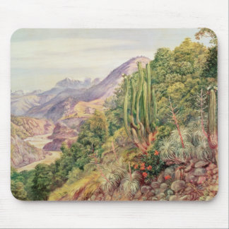 The Streams of Languenas in the Cordellera, Chile Mouse Pad