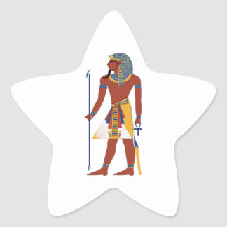 THE STRENGTH OF STAR STICKER