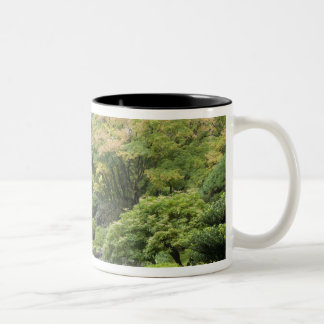 The Strolling Pond with Moon Bridge Mugs