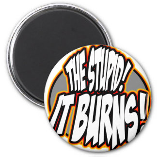 The Stupid, It Burns! Oval Fire 2 Inch Round Magnet