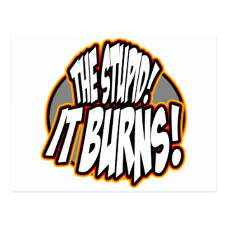 The Stupid It Burns Oval Fire Post Card