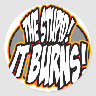 The Stupid, It Burns! Oval Fire Stickers