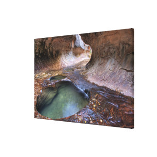 The Subway along the Left Fork of the Virgin 2 Stretched Canvas Print